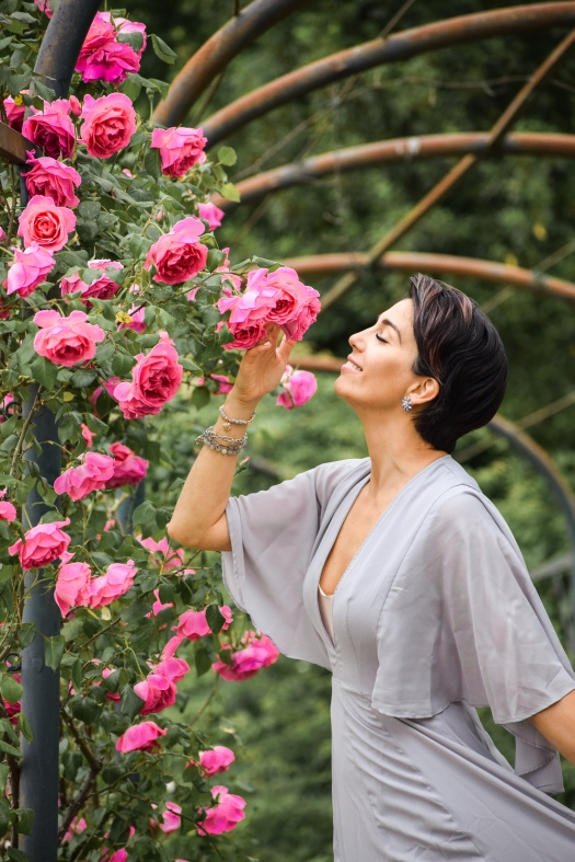 Rose Gardens42